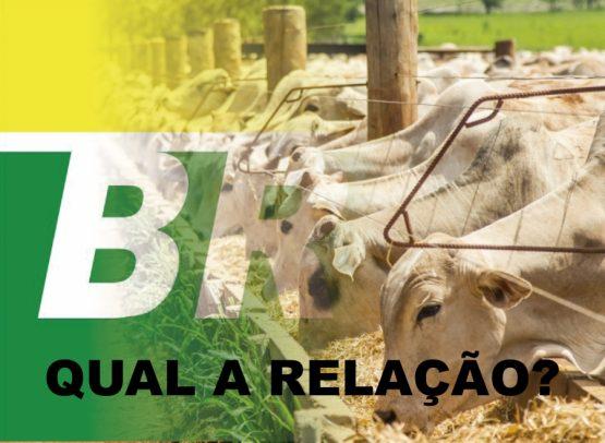 Quando o Brasil vira refém da ureia de outros países